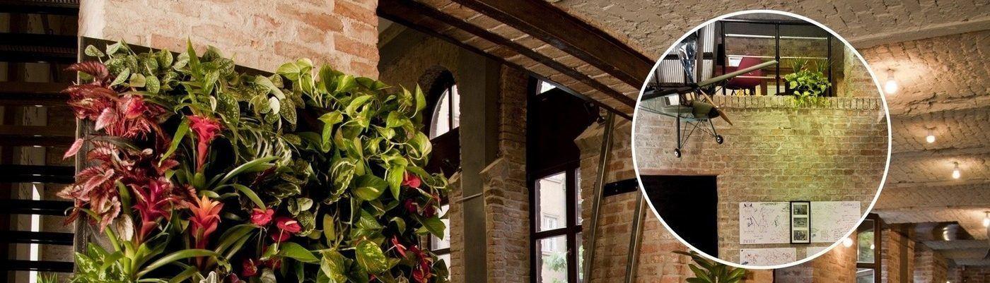CityPlant Növénydekoráció